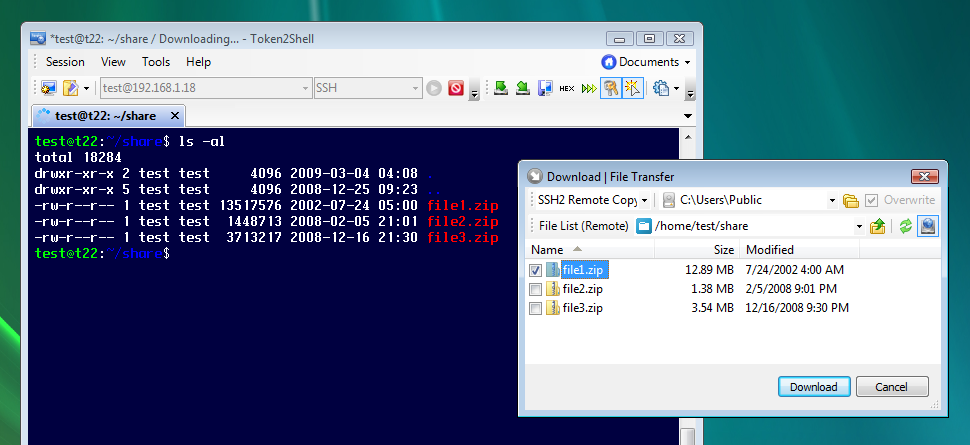 Configuring freesshd for use with ssh